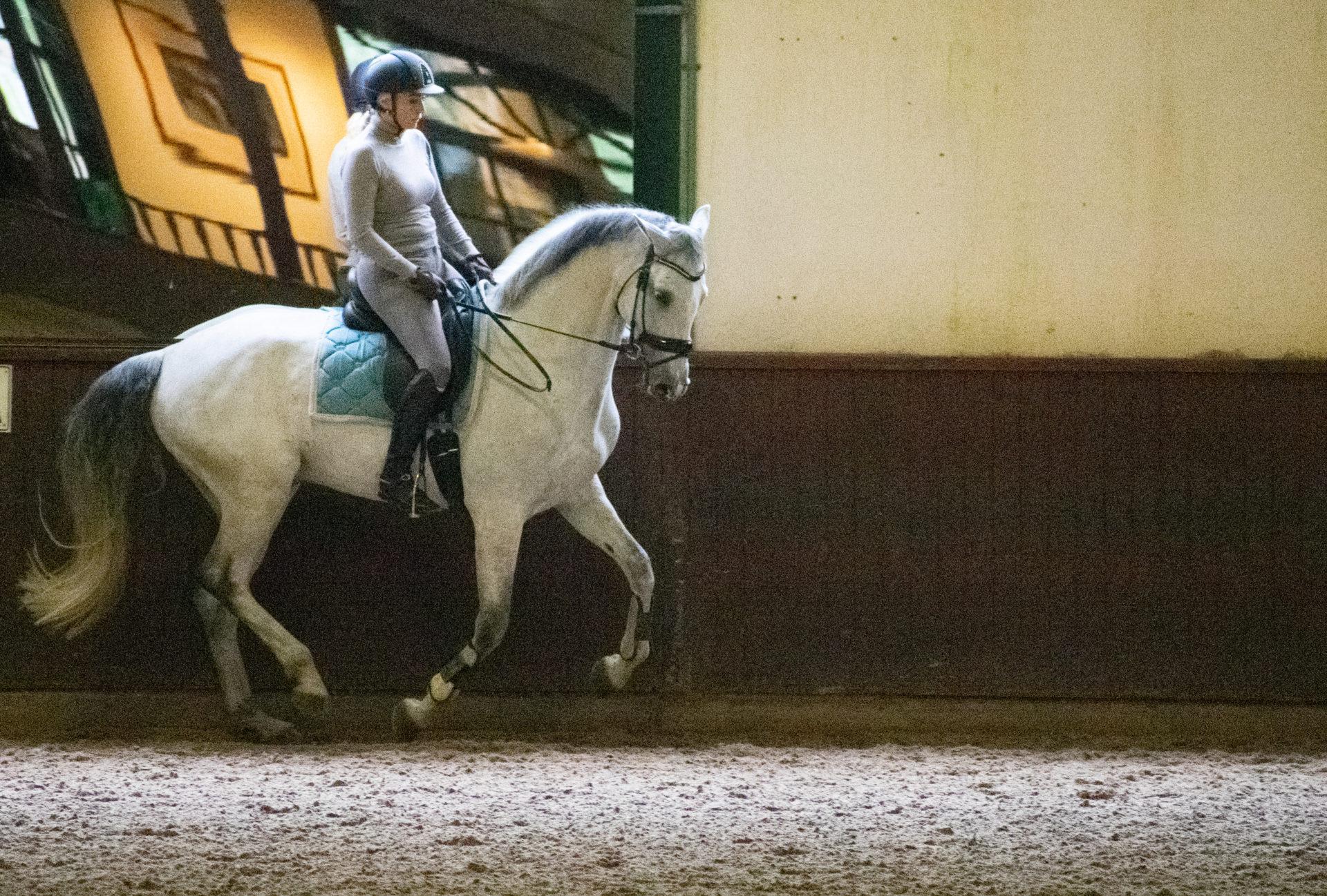 Nicole en haar paard - Trainingarrangement Academy Bartels